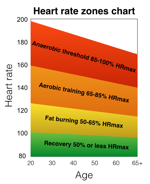 Figure 1 A Sample Heart Rate Zones Chart Typically Found In Gym